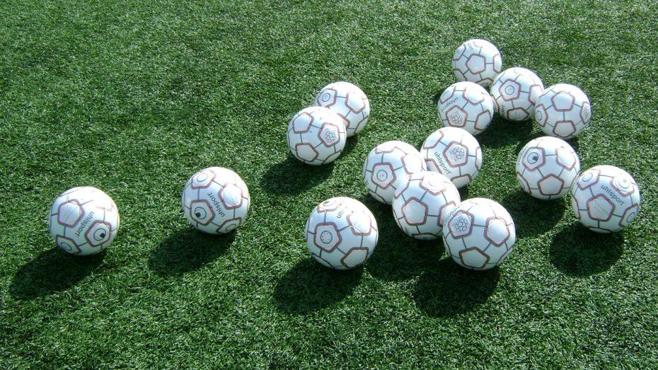 beroe2006-balls2